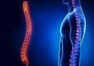 анализ на остеопороз