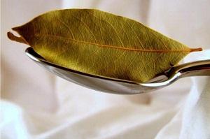 лавровой лист