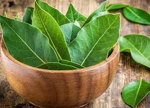 рецепты с лавровым листом для лечения суставов